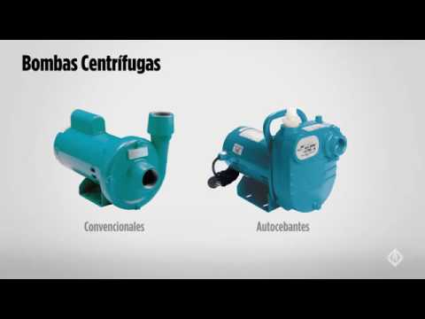Bombas Centrífugas – Franklin Electric